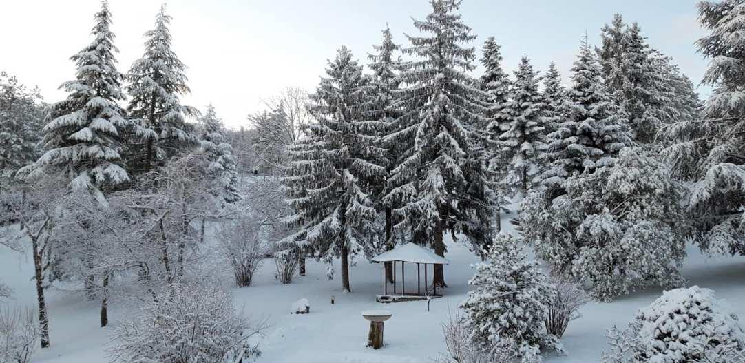 cince neve1