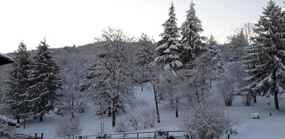 cince neve2